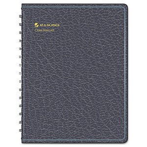 At-A-Glance Class Record Book